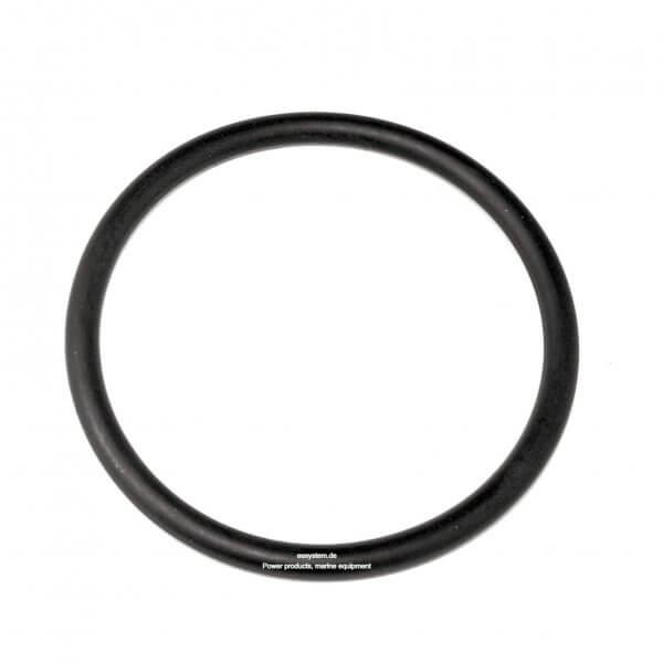 KOSHIN O-Ring 0113989